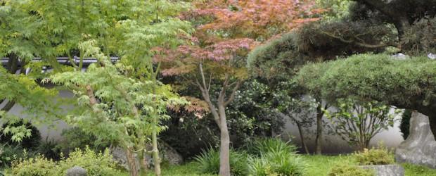 japanischer garten in bielefeld impressionen garden blog. Black Bedroom Furniture Sets. Home Design Ideas