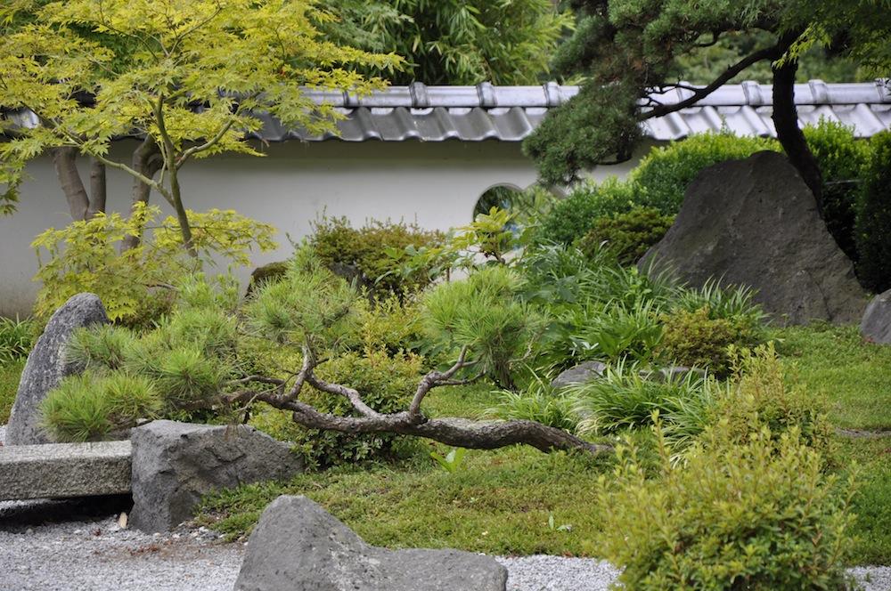 Liegende tanne im japanischen garten garden blog - Japanischer garten bielefeld ...