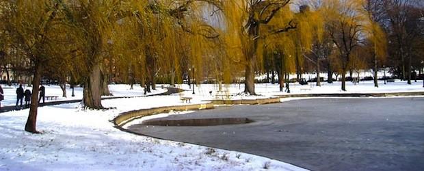 Den gartenteich auf den winter vorbereiten garden blog for Teich winter