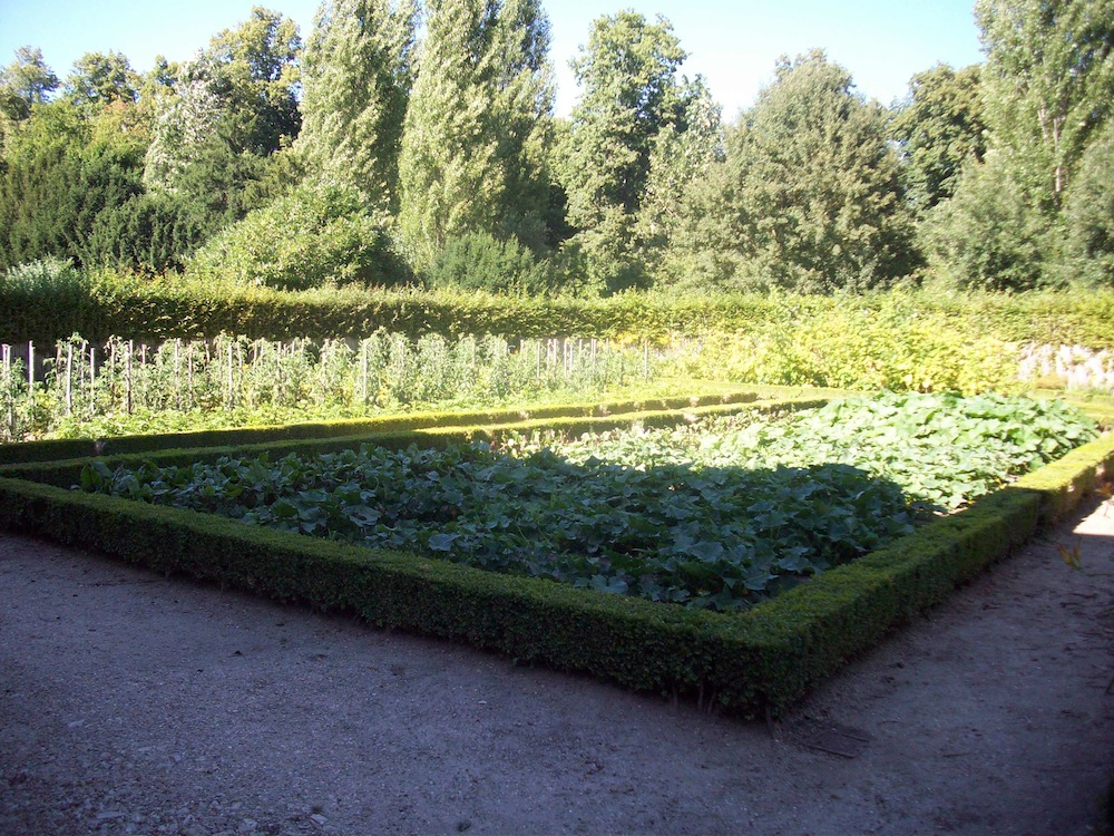 beet im garten von schloss versailles garden blog. Black Bedroom Furniture Sets. Home Design Ideas