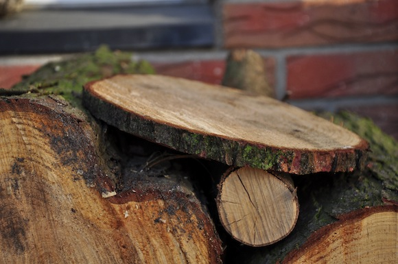 Die gesägte Holzscheibe.