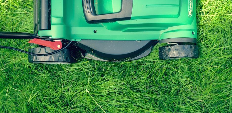 Richtig Rasen Mahen Ein Guide Fur Einsteiger