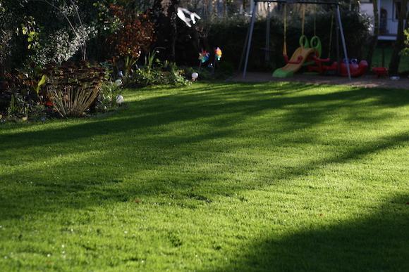 Rasen mit gepflegtem Rasen