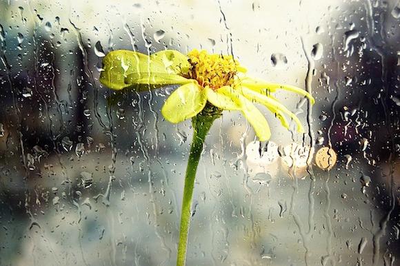 Ein bisschen Regen im Garten kann bei einer Outdoor-Küche zum Problem werden.