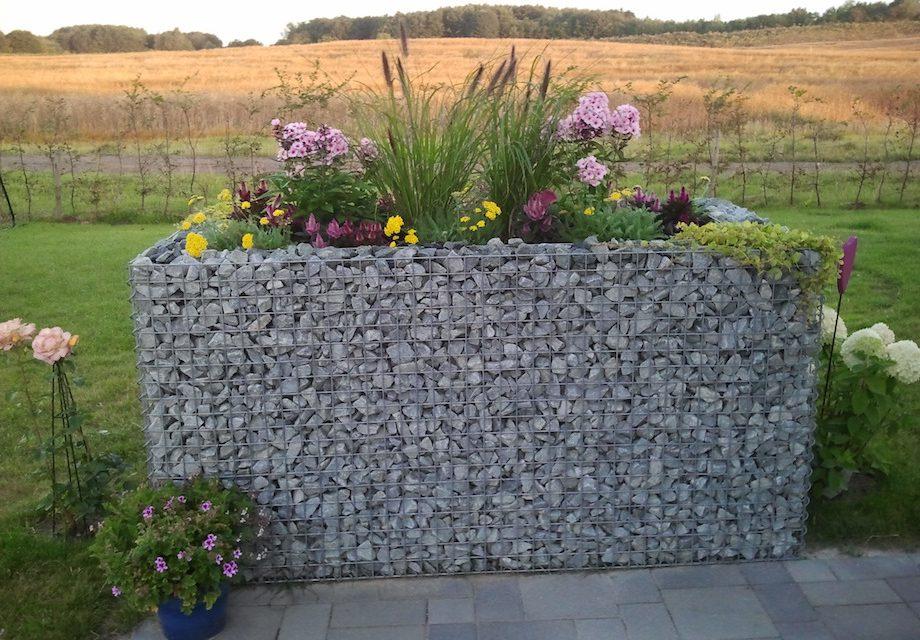 gabionen f r ein hochbeet etwas anders g rtnern garden. Black Bedroom Furniture Sets. Home Design Ideas